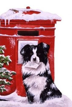 Collie and postbox-Watercolour-xmas card design