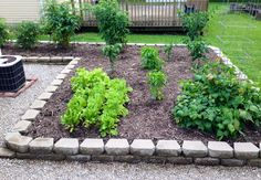 The raised garden. A little later in the season