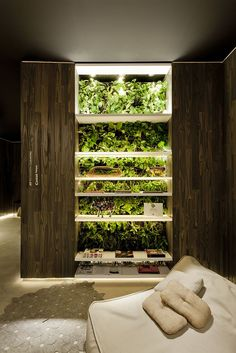 vertical garden bookcase #decor #verticalgarden