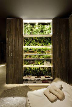 vertical garden bookcase #decor #verticalgarden