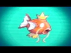 Magikarp Caught In Pokemon Black 2 / Pokémon Black Version 2 By Using Action Replay For The 3DS / DSI XL / DSI / DS Lite    Please Comment, Like, Favorite, And Subscribe    Follow/ Like TGNDireGaming On :     YouTube ➜ http://www.youtube.com/user/TGNDireGaming/featured    FaceBook ➜ http://www.facebook.com/TGNDireGaming    Twitter ➜ https://twitter.com/tg...