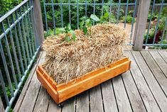 Did you know you can grow food in straw bales? Here's a video and photo-instructions from Bonnie Plants.