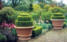 Garden designer Arabella Lennox- Boyd has a stylish sideline in pots.