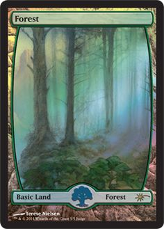 Magic the Gathering Judge Promo Full Art Basic Lands - Forest