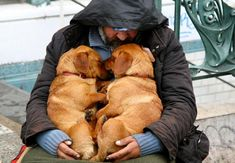 Senza tetto dal grande cuore, le immagini toccanti degli umani e dei loro amici cani | tiscali.notizie