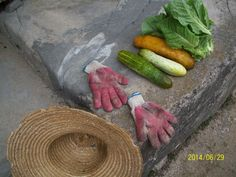 Country produce