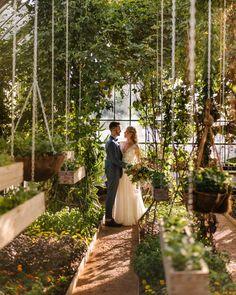 wedding photo in the greenhouse at babylonstoren Intimate Wedding Reception, Unique Wedding Venues, Intimate Weddings, Wedding Vendors, Unique Weddings, Wedding Events, Wedding Ceremony, Destination Wedding, Wedding Prep