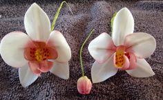 Orchideeën van koud porselein.