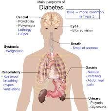 نتيجة بحث الصور عن clinical skills body diagrams