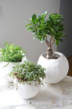 Pour ma part des cache-pots façon cocon. Parce que mes plantes le valent bien &;-) Un ballon, des bandes plâtrées et le tour est joué!!!