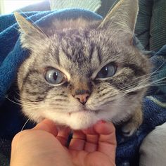 Oye tú de qué te ríes no me toques!!