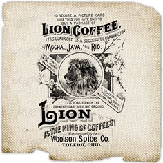 Lion Coffee advertising animals wild ads nature by Vintage Ephemera, Vintage Ads, Coffee Advertising, Lion Coffee, Vintage Packaging, Burlap Pillows, Subway Art, Picture Cards, Logo Design