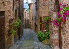 streets of spello italy - Google Search