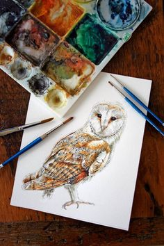 Barn Owl - Original Watercolor Painting Gorgeous! By Jody Edwards (jodyvanB on #Etsy)