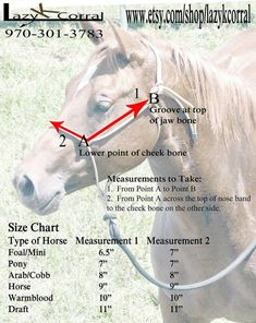 Superior Quality Lazy K Corral Rope Horse Halter. by lazykcorral