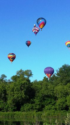 Hot Air Balloon Festival Quechee. Photo by Carly Carson