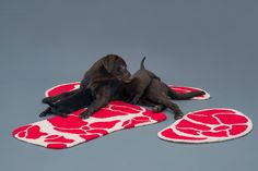"Ma Yansong of MAD designs ""Niku Rug"" for #Labradors - inspired by a ""hefty cut of Niku (meat)."" #animallovers"