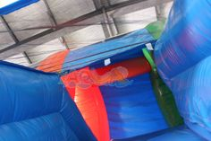 13 Best Dolphin Inflatable Water Slide images | Aqua, Dolphins, Water