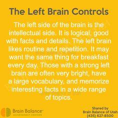Gut Brain, Brain Health, Primitive Reflexes, Brain Facts, Learning Disabilities, Gods Promises, Caregiver, Interesting Facts, Self Improvement