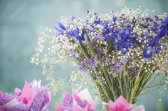 Flowers in every moment Kiss Online, In This Moment, Flowers, Plants, Plant, Royal Icing Flowers, Flower, Florals, Floral