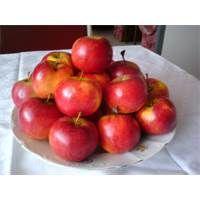 DSC00590 Apple, Vegetables, Fruit, Food, Apple Fruit, Essen, Vegetable Recipes, Meals, Yemek
