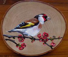 Mini Paintings, Nature Paintings, Wood Slice Crafts, Konica Minolta, Diy Canvas Art, Wooden Art, Exotic Birds, Bird Art, Beautiful Birds