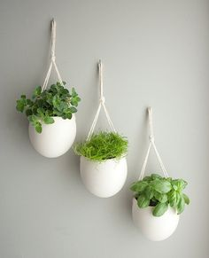Take a minimalistic approach with hanging porcelain planters ($120 for three). The clean cream color is sure to make the green leaves pop, creating a dramatic focal point.