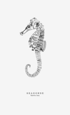 Seahorse. Diseño Katrin Anz