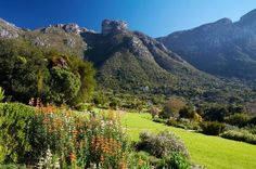 Kirstenbosch National Botanical Garden in Cape Town, South Africa makes Travel & Leisure's list of the World's Best Botanical Gardens Knysna, Port Elizabeth, Most Beautiful Gardens, Beautiful Places, Wonderful Places, National Botanical Gardens, Gardens Of The World, Safari, Famous Gardens