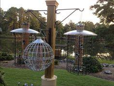 diy bird feeder station results - ImageSearch Homemade Bird Houses, Homemade Bird Feeders, Diy Bird Feeder, Funny Bird, Squirrel Baffle, Bird Feeding Station, Bird House Kits, Bird Aviary, Greenhouse Plans