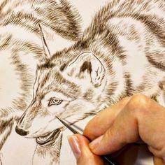 "Wolf painting in progress 9"" x 12"" watercolor on board Rebecca Latham  #wildlife #watercolor #art #animal #painting #miniature #artist #miniatureart #realism #animallovers #wolf #timberwolves #puppy #workinprogress #naturalism"