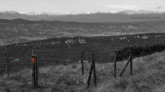 El Pirineo desde El Pla de la Calma, Barcelona