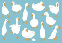 Duck Illustration, Simple Illustration, Illustrations And Posters, Goose Drawing, Nature Sketch, Writing Art, Drawing Reference Poses, Simple Art, Bird Art