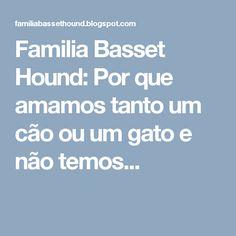 Familia Basset Hound: Por que amamos tanto um cão ou um gato e não temos...