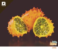 O pepino africano (Cucumis metuliferus), também conhecido como kino ou kiwano parece um melão com espinhos e, quando maduro, tem sabor semelhante ao da banana!