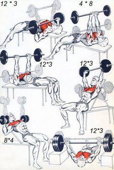 #Chest #Exercises