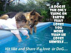 i agree.. i love my dog <3