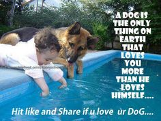 Totally true! I love my dogs...<3