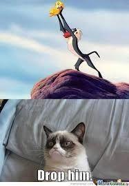 Grumpy cat is not a Simba fan. Possibly the best grumpy cat ever. Grumpy Cat Quotes, Funny Grumpy Cat Memes, Cat Jokes, Funny Disney Memes, Funny Cats, Funny Memes, Memes Humor, Angry Cat Memes, Funny Quotes