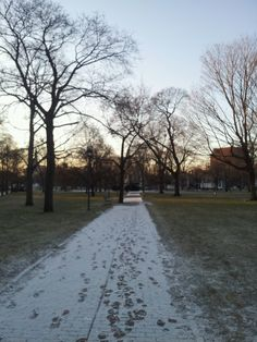January morning in Cambridge Common outside of Harvard Square. DiscoverHarvardSquare.com.