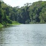 TORTUGUERO, THE AMAZON OF COSTA RICA | TheHealthyDish.com