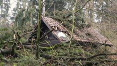 Schwere Schäden nach Sturm Friederike im Wald im Kreis Northeim House Styles, Home Decor, Woodland Forest, Homemade Home Decor, Decoration Home, Interior Decorating