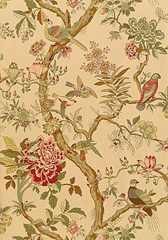 I am a huge fan of Thibaut wallpaper and fabric and Papagayo from their Anniversary Collection is wonderful. The styling of this room above. Chinoiserie Wallpaper, Toile Wallpaper, Bird Wallpaper, Boutique Deco, America's Finest, Bathroom Wallpaper, Hall Wallpaper, Patterns In Nature, Nature Pattern