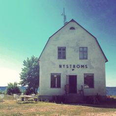 Bungenäs, Gotland 2014. Fotograf: Katrin Bååth