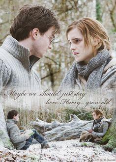 Harry and Hermione. True friendship!!