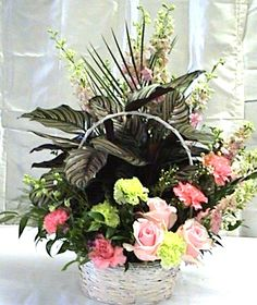 Zebra plant with pink roses, carnations and larkspur.