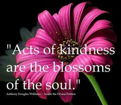 Acts of kindness are blossoms of the soul.