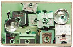 Vintage in Green by Kim Ripley