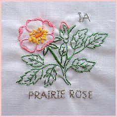 Iowa State Flower   Flickr - Photo Sharing!