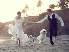 Celebrity Pets: Wedding Day Fun! - 'ACE' IN THE HOLE - Weddings, Pet Photo Special : People.com